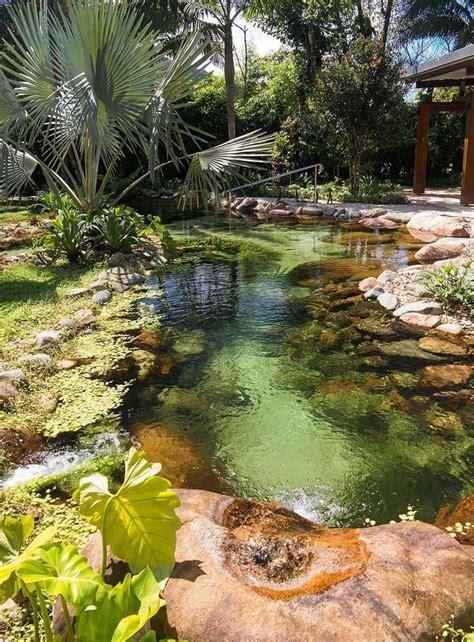 backyard swimming ponds best 20 natural backyard pools ideas on pinterest