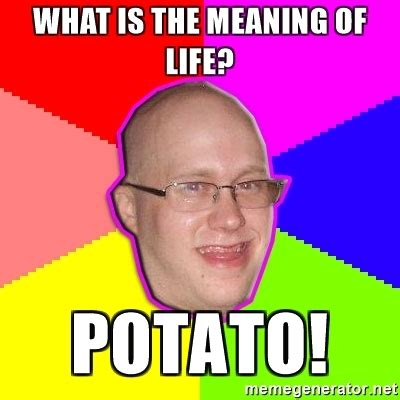 The Meaning Of Meme - what is the meaning of life potato artard meme generator