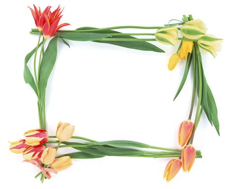 cornici html free photo frames frames photo frames picture