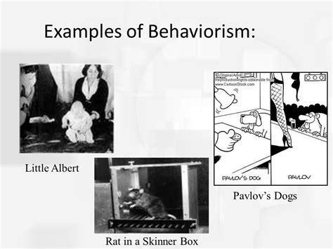 exle of behaviorism history theories and methods ppt
