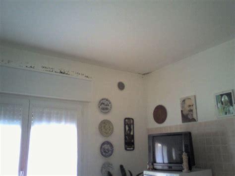 muri bagnati muffe e muri bagnati umidit 224 muri termografia treviso