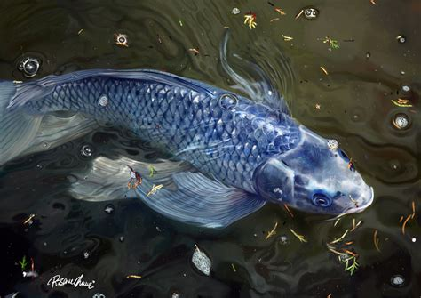collection nature s show fish by techgnotic on deviantart