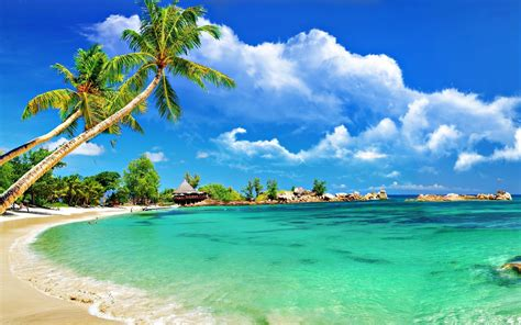 desktop themes beaches tropical beach desktop wallpaper wallpapersafari
