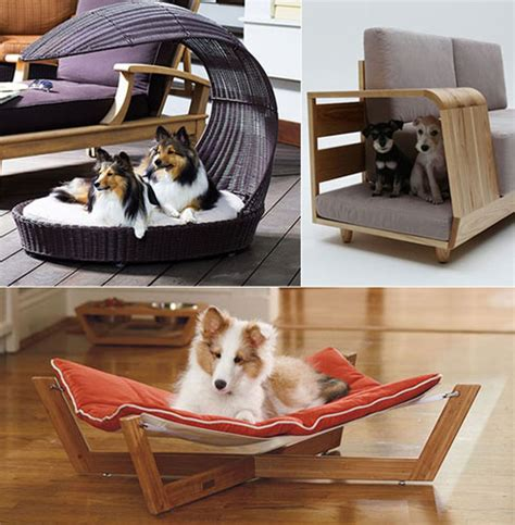 modern pet beds padstyle interior design modern