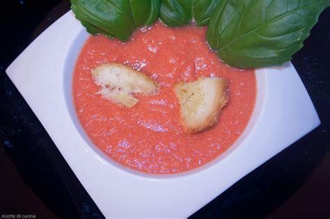 cucinare pomodori crema fredda di pomodori ricette di cucina