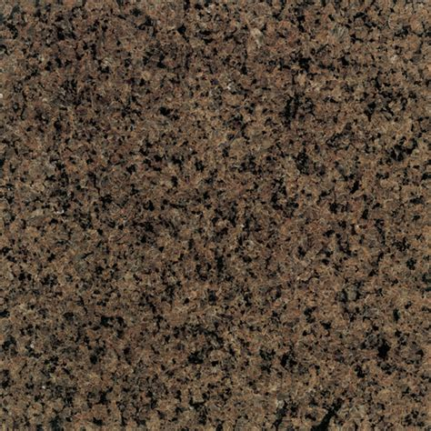 daltile granite tropical brown polished 12 quot x 12 quot tile g29412121l