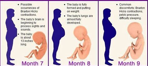 pregnant 7 months after c section learn about the changes during the course of your pregnancy