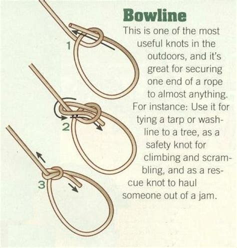 how to tie a rope swing to a tree clemson ta web tools bowline tutorial