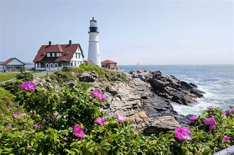 2018 Maine Coast And Lighthouses Adventure Cycling