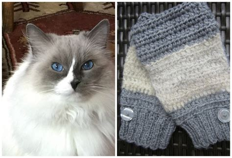knitting with cat hair 16 who knitted with pet hair top crochet pattern