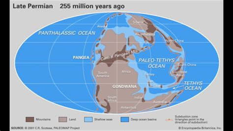 map world before land separated how did the continents separate