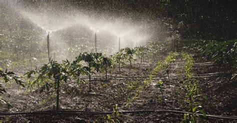 spray irrigation system    work sprinkler types