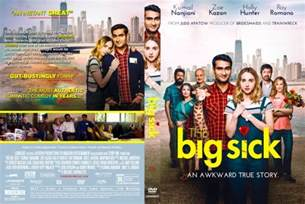 Big Covers The Big Sick Dvd Covers Labels By Covercity