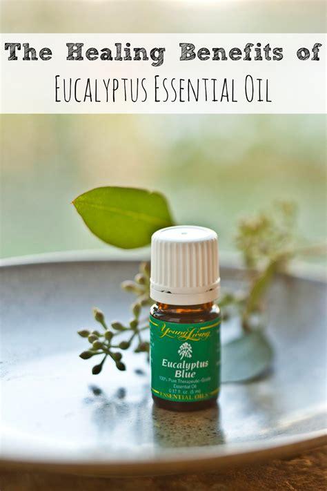 La Room Spray Peppermint 25 unique eucalyptus essential ideas on
