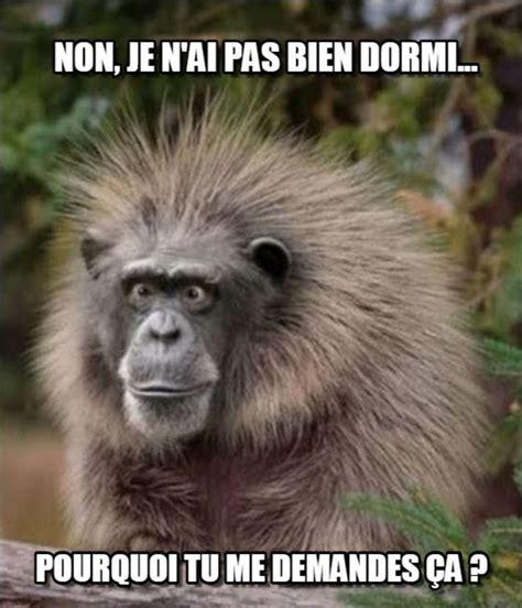 Meme Francais - collection de m 232 mes en fran 231 ais le vrai de vrai
