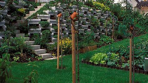 hanggestaltung pflegeleicht neue hangbepflanzung darauf sollten sie achten