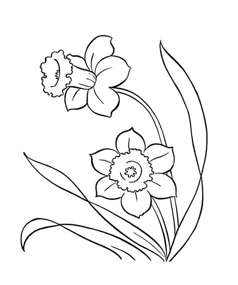 spring flower coloring pages az coloring pages