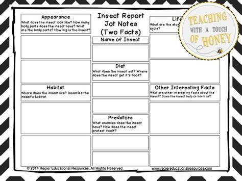 Insect Report Template 702 Best Insect Ideas Images On