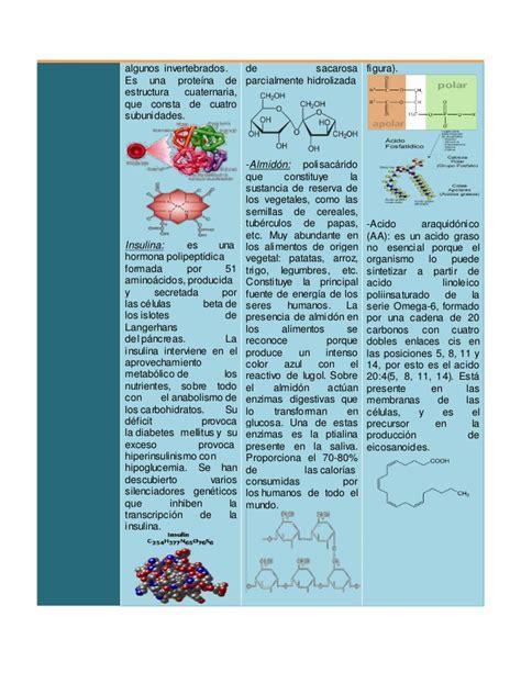 alimentos que aportan proteínas prote 227 nas