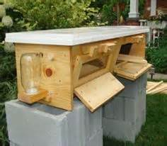 Top Bar Beehive Kits by Top Bar And Warre Hive Bee Keeping On Top Bar