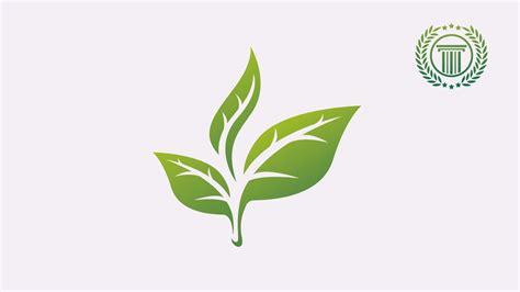 illustrator tutorial leaf triple leaf logo design tutorial in adobe illustrator