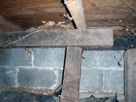 Crawl Space Structural Repair