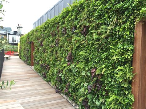 Living Wall Uk Coca Cola Hq Biotecture