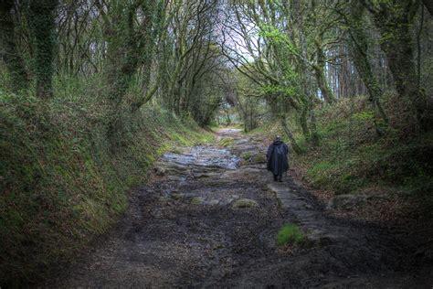 el camino de las el camino de santiago
