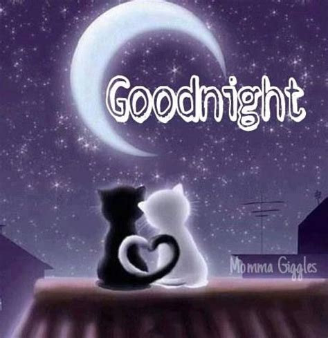 imagenes good night sweet dreams goodnight lovelies leave me a nice comment to wake up