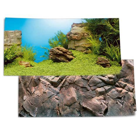 Lu Aquarium 50 Cm juwel fotorueckwand pflanzen steine 100x50cm fuer aquarium