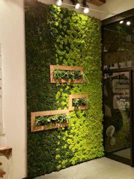 inspiration moss wall living art garden therapy