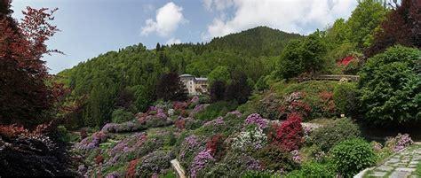 prealpi bagnolo giardini di porpora lo spettacolo delle fioriture semieidee
