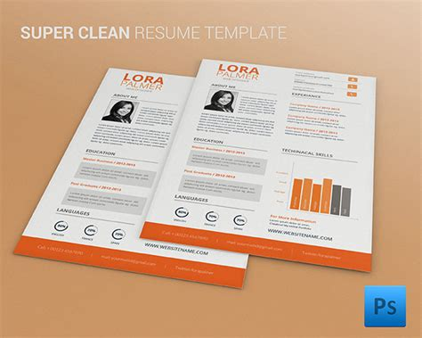 Sample Resume Format In Excel by Professional Resume Template 52 Free Samples Examples