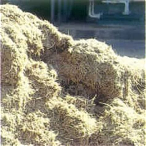 How To Make Paper From Sugarcane Waste - isl