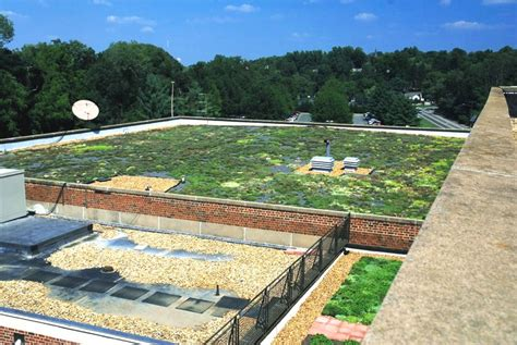 Albemarle County Office Building by The Albemarle County Office Building Greenroof Photo