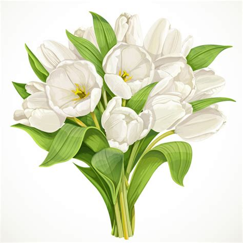 Benihbijibibit Bunga Tulip Blanc bouquet