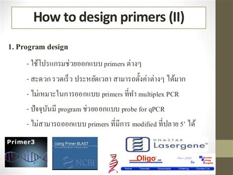 pattern making primer pcr primer design