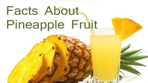 fruit facts facts about pineapple fruit