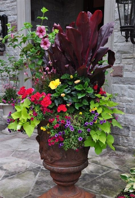 small garden containers in a small courtyard or patio you to make use of