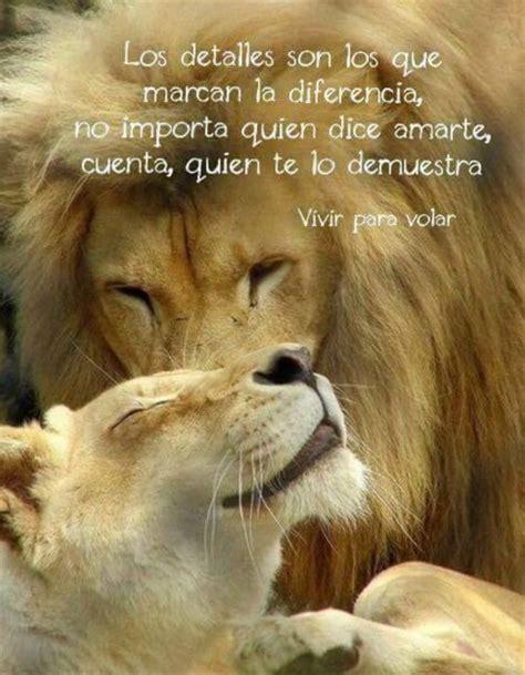 imagenes leones con mensajes frases de amor cortas