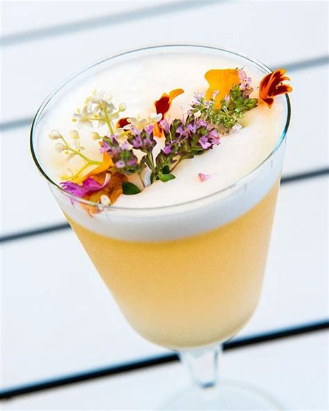 drink garnishes gin and passionfruit cocktail with green tea syrup drink