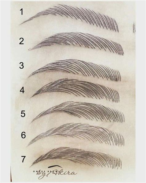 eyebrow shape template 1000 images about microblading hair stroke feather