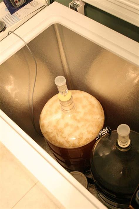 american light lager recipe how to make beer at home best homebrew recipes