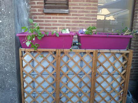 Charmant Plantes Vivaces En Jardiniere #4: 91864620160508191035.jpg