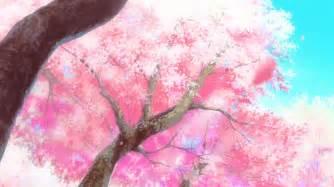 Washington Dc Flower Shops - cherry blossoms gifs wifflegif