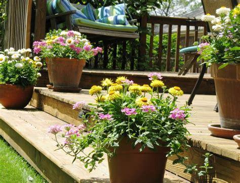 Deck Plants by The Versatile Pot Yard Ideas Yardshare