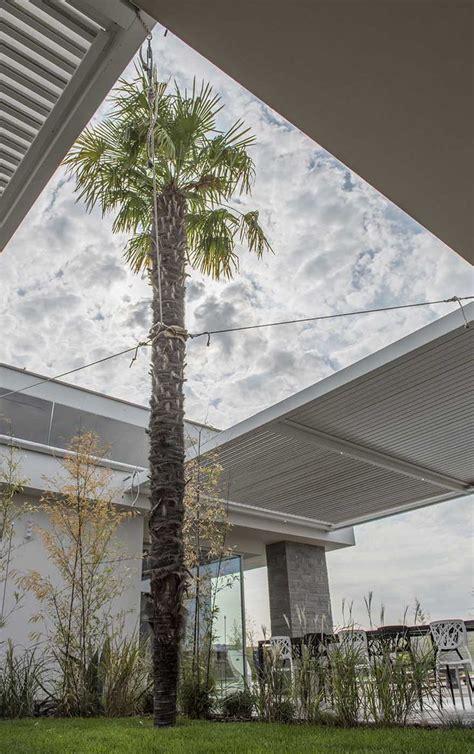 Giardini Moderni E Contemporanei by Oltre 25 Fantastiche Idee Su Giardini Moderni Su
