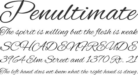 Wedding Font Openoffice by 26 Script Fonts Ttf Otf Design