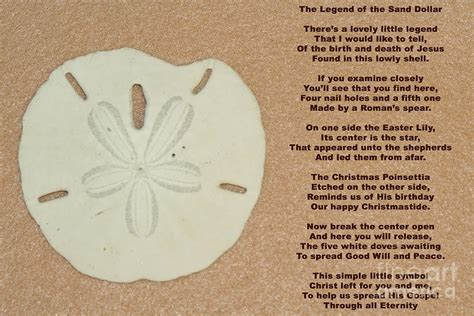 legend of the sand dollar yourhappyplaceblog