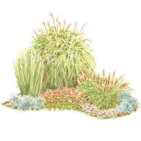 colorful front yard garden plans grasses ornamental grasses and the beauty